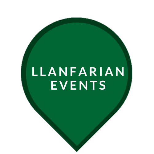 LLanfarian Border Collie Events - Llanfarian Events